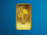Daffodils Minted Bar Design